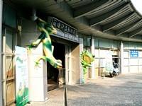 兩棲爬蟲動物館<br/> 攝影:amo