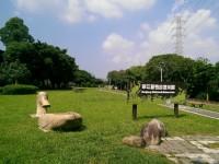 華江雁鴨自然公園