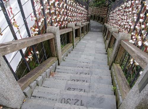 年梯步道-年梯步道