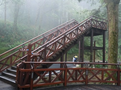 Alishan Forest Recreation Area-201407阿里山木棧道