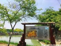 烏山頭水庫風景區(珊瑚潭)