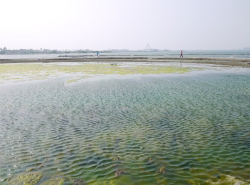 大鵬灣蚵殼島