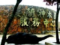 神木區招牌<br/> 攝影:簡時強