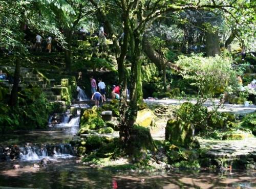 陽明山溫泉-公園內溪流都是溫泉