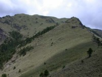 一望無際的草坡<br/> 攝影:阿英的登山小站