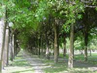宜兰运动公园