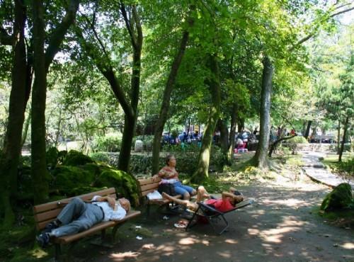 陽明山溫泉-前山公園-乘涼的好地方