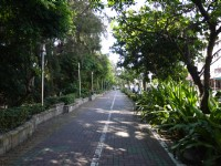 旗津海岸線自行車道