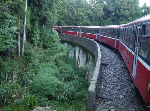 Alishan Forest Recreation Area-201407祝山線沿途