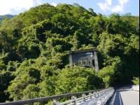 武陵綠色隧道<br/> 攝影:旅遊王攝影組