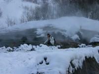 長白山瀑布下的溫泉<br/> 攝影:馮順