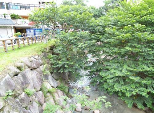 地熱谷(地熱谷景觀公園)-熱泉小溪
