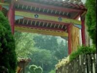 万瑞森林乐园