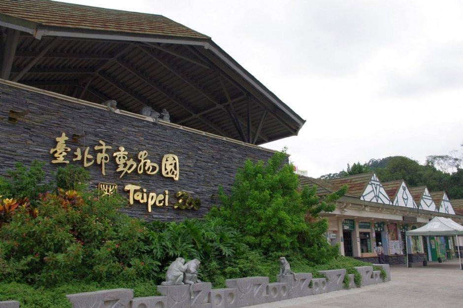 台北市立動動園的圖片搜尋結果