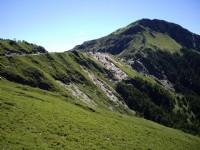 從步道望稜線<br/> 攝影:老山羊部落格