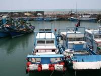 成艘的漁船<br/> 攝影:老山羊部落格