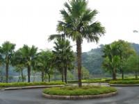 龍潭湖風景區入口<br/> 攝影:余燕鳳