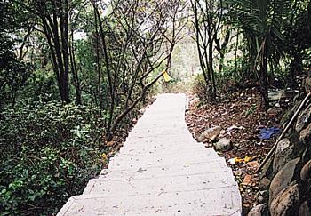 瓊仔湖登山步道-瓊仔湖登山步道