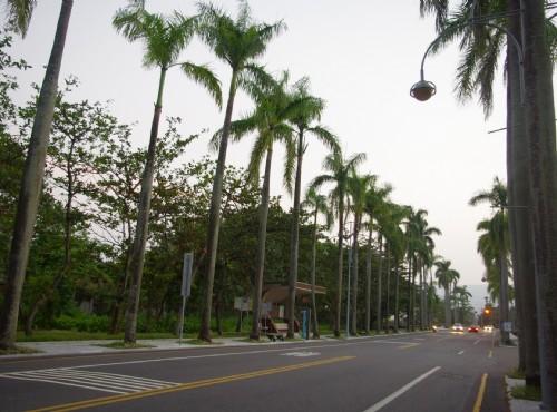 中興新村自行車道