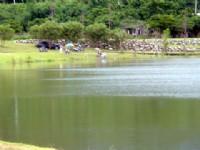 岸邊垂釣02<br/> 攝影:劉雅妍