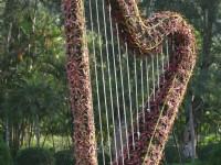 豎琴的庭園造景<br/> 攝影:簡時強
