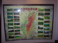 鐵觀音包種茶研發推廣中心