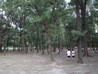 海濱秋茂園