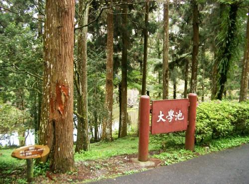 溪頭自然教育園區(溪頭森林遊樂區)-大學池