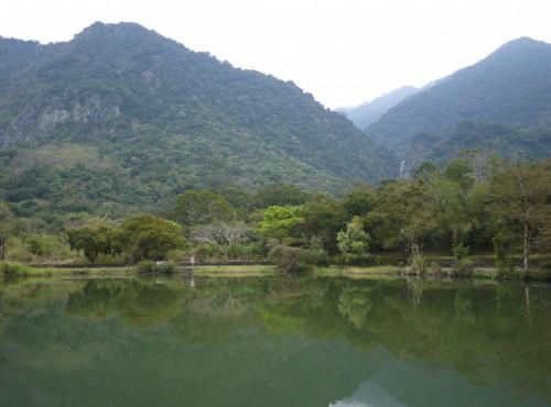 羅山大魚池-羅山大魚池