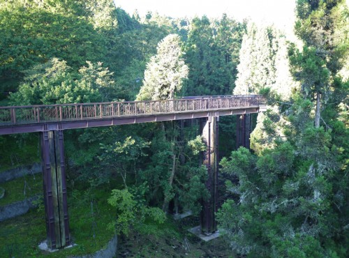 Alishan Forest Recreation Area-201407沼平天空步道