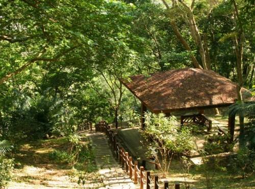 知本国家森林游乐区-好漢坡步道休憩亭