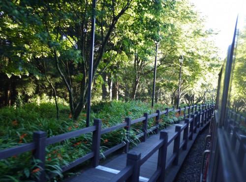 Alishan Forest Recreation Area-201407祝山線