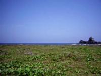 柚子湖<br/> 攝影:Eva隨手拍