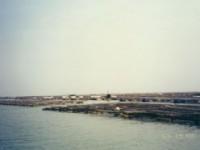 Cigu Lagoon