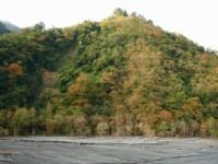 奧萬大溪北岸景觀<br/> 攝影:老山羊部落格