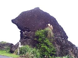 蘭嶼鋼盔岩