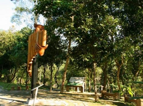 知本国家森林游乐区-植物園區解說牌