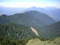 從步道俯瞰森林景觀<br/> 攝影:老山羊部落格