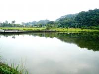 另一面看龍潭湖<br/> 攝影:余燕鳳