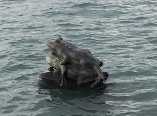 水蛙頭步道-水蛙頭