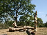 原住民藝術<br/> 攝影:老山羊部落格