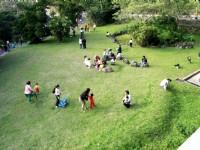 草坪上嬉戲的人群<br/> 攝影:陳銘祥