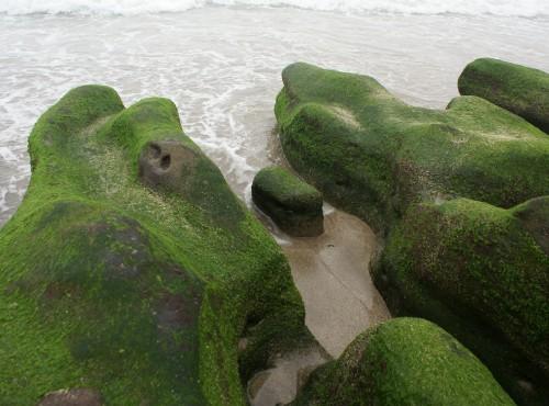 富貴角公園-老梅綠石槽