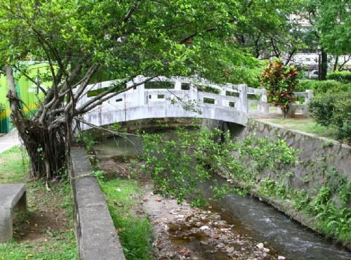 北投溫泉-北投公園內水溝也是溫泉
