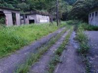 往復興坑路上<br/> 攝影:xcatx