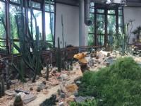 台北典藏植物園