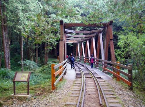 水山巨木步道-仿古木棧橋