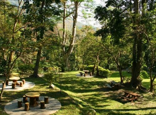 知本国家森林游乐区-植物園區的休憩亭