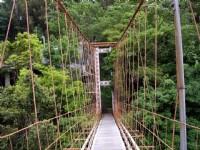 虎山吊橋橋面<br/> 攝影:老山羊(林文智)