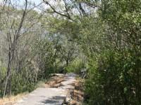 平坦步道設施<br/> 攝影:老山羊部落格
